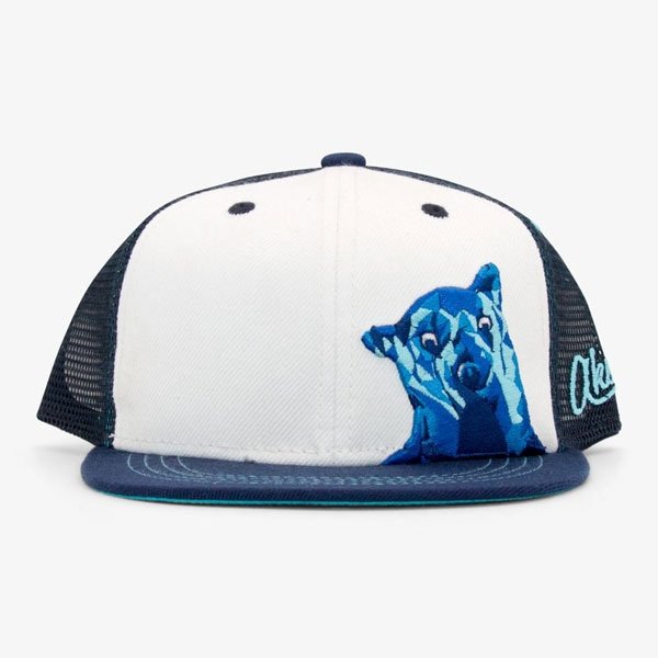 YOUTH BASEBALL HAT BROWN BEAR