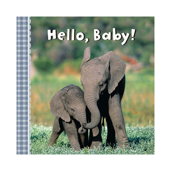 HELLO BABY BOARD BOOK